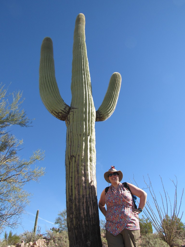 saguaro Profession Unicorn Blogger