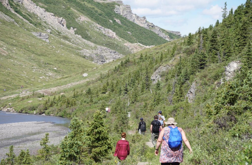 Hiking Denali Savage River Trail Loop Alaska