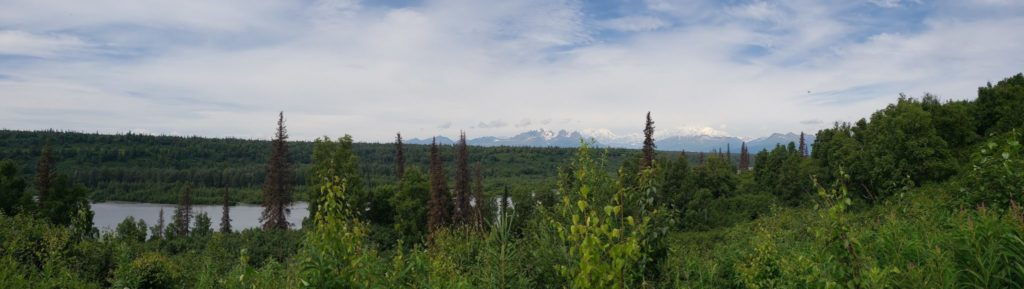 Mountain vista loop trail Denali Alaska